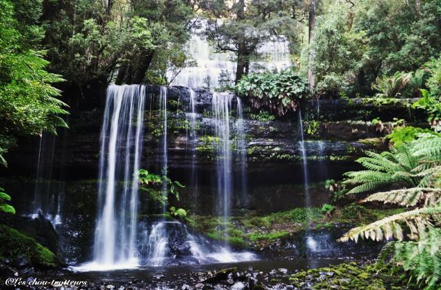 Cascade naturelle Tasmanie